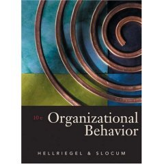 9789812435477: Organizational Behavior (with CD)