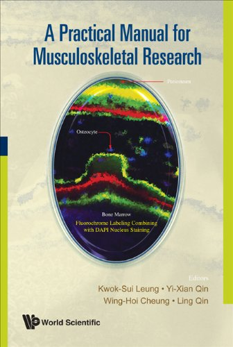 PRACTICAL MANUAL FOR MUSCULOSKELETAL RESEARCH, A: LEUNG KWOK SUI,QIN