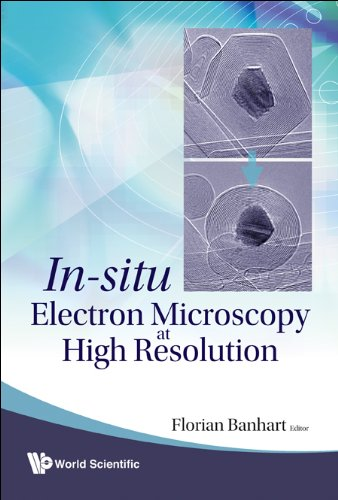 9789812797339: In-Situ Electron Microscopy At High Resolution