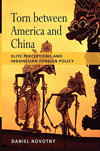 9789814279598: Torn Between America and China: Elite Perceptions and Indonesian Foreign Policy