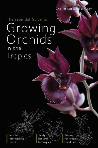 The Essential Guide to Growing Orchids in the Tropics: Fatt, Chia Tet; Astley, David