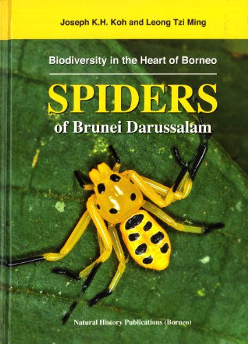 9789838121453: Spiders of Brunei Darussalam - Biodiversity in the Heart of Borneo