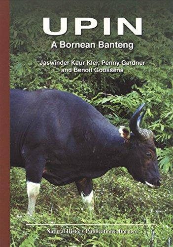 9789838121651: Upin: A Bornean Banteng