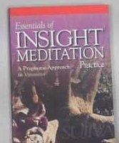 Essentials of Insight Meditation Practice: A Pragmatic Approach to Vipassana: Sujiva