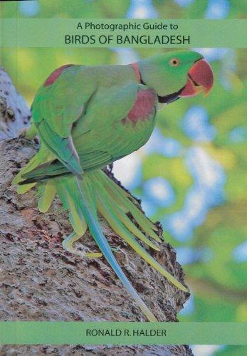 9789843319258: A Photographic Guide to Birds of Bangladesh