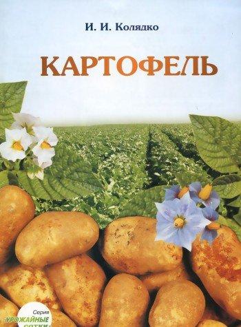 9789854054308: Kartofel