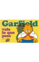 Garfield Vale Lo Que Pesa (Spanish Edition) (9870003443) by Davis, Jim