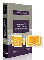 9789870330219: La filiación en el Código Civil y Comercial
