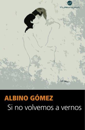 9789871587094: Si no volvemos a vernos (Spanish Edition)