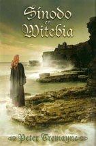 9789872237431: SINODO EN WITEBIA (Spanish Edition)