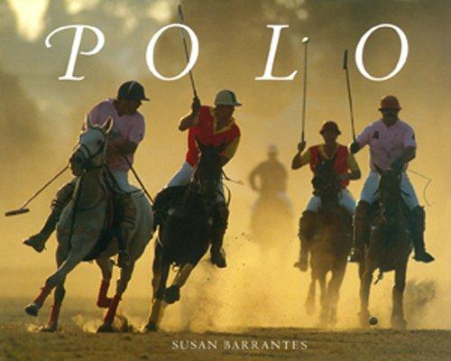9789879528082: Polo