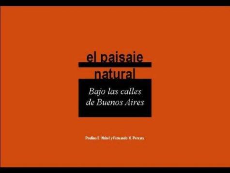 9789879640821: El Paisaje Natural, Bajo Las Calles de Buenos Aires