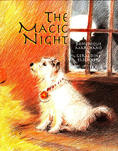 9789881512871: Magic Night. Written by Graldine Elschner, Dominique Marchand