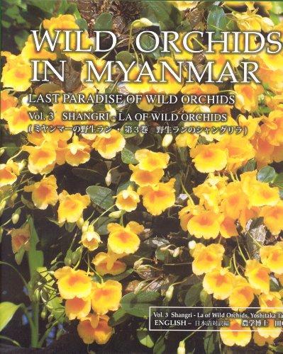 9789889776497: Wild Orchids in Myanmar Vol 3: Shangri-La of Wild Orchids (Wild Orchids in Myanmar: Last Paradise of Wild Orchids)