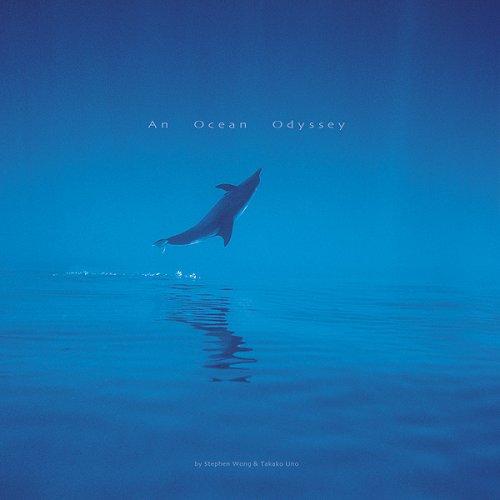 An Ocean Odyssey (Hardback): Stephen Wong, Takako Uno