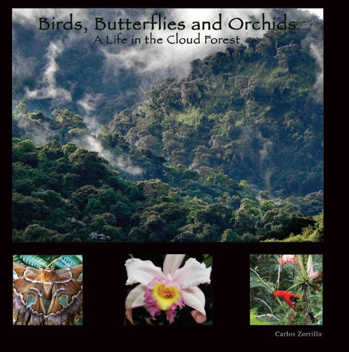 9789942021144: Birds, Butterflies and Orchids: A Life in the Cloud Forest