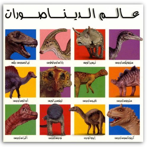 9789948426080: Arabic Board Book for Children: My Big Dinosaur Book (Large Format, Arabic Edition)