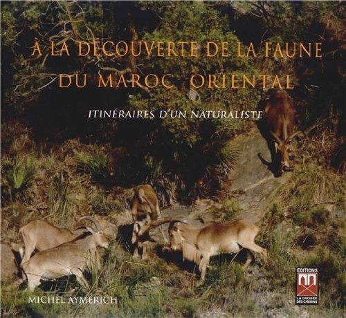 9789954103593: A la Découverte de la Faune du Maroc Oriental : Itinéraires d'un Naturaliste