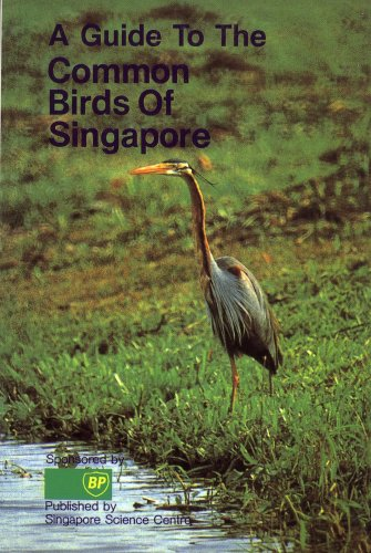 9789971881139: A guide to the common birds of Singapore