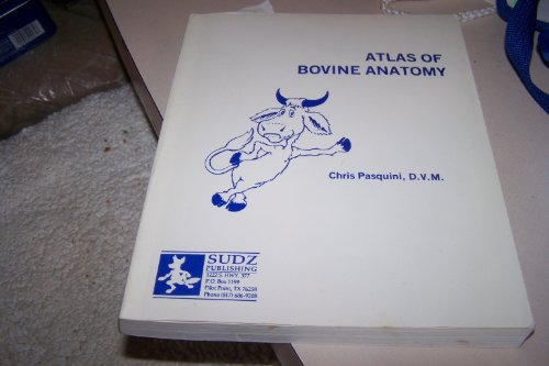 9789990309508: Atlas of Bovine Anatomy