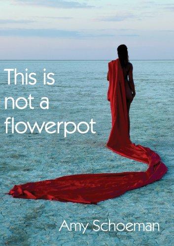 9789991687896: This Is Not a Flowerpot