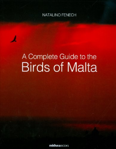 A Complete Guide to Birds of Malta (Hardback): Natalino Fenech