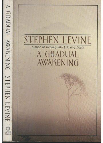 9789994014996: [A GRADUAL AWAKENING ]by(Levine, Stephen )[Paperback]