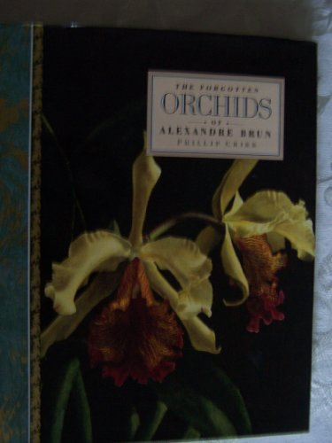 9789994115334: The Forgotten Orchids of Alexandre Brun