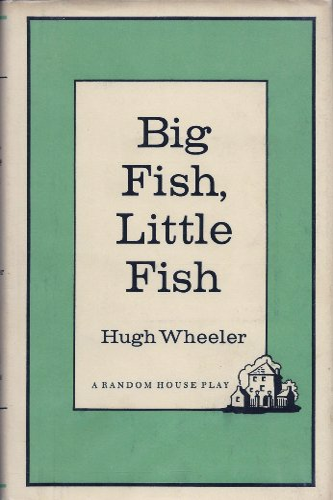 9789995665869: Big Fish, Little Fish