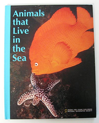 Animals That Live in the Sea: Straker, Joan Ann