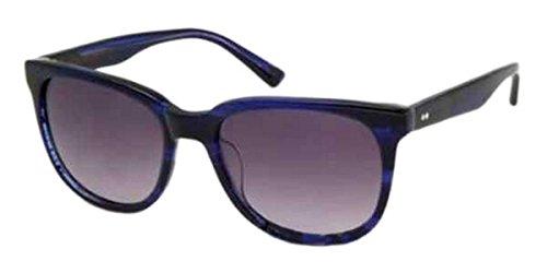 9789999670036: REPLAY RY506S03 Retro Wayfarer Style Sunglasses Blue Black Plastic Frame Black Gradient Lens High UV Protection Antiglare CAT 3