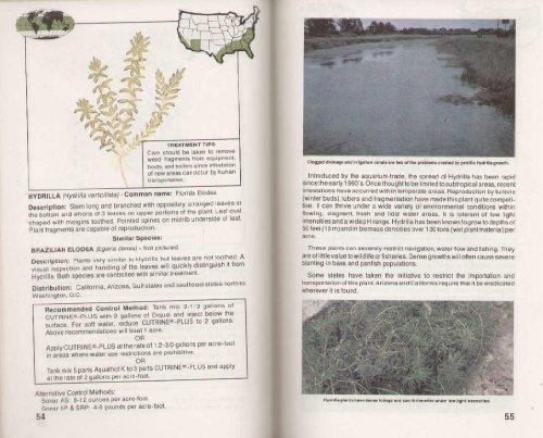 How to Identify and Control Water Weeds: James C. Schmidt