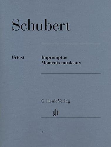 Impromptus und Moments musicaux (Paperback)