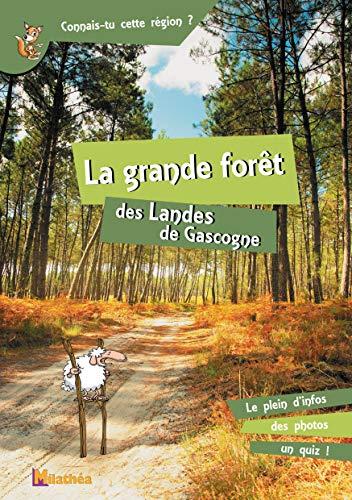 La grande forêt des Landes de Gascogne: Patrice Julien