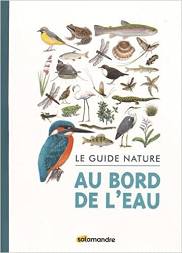 Guide nature au bord de l'eau (Le): Collectif