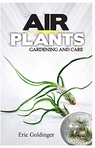9798646586354: AIR PLANTS GARDENING AND CARE: Complete Guide to Growing Tillandsias and the Amazing Benefits of Air Plants