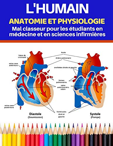 9798697295960: L'humain Anatomie et physiologie Mal classeur pour les étudiants en médecine et en sciences infirmières: Apprenez l'anatomie et la physiologie de la manière la plus simple et la plus efficace possible