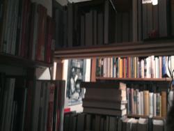 Bücherwinde Ruth Morel