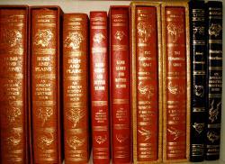 SAFARI BOOKS