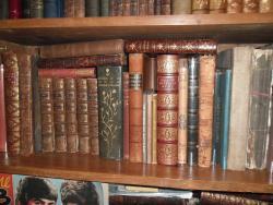 Sue Lloyd-Davies Books