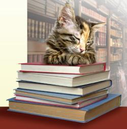 Cat's Cradle Books