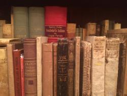 Dedalo M. Bosio - Libri antichi e usati